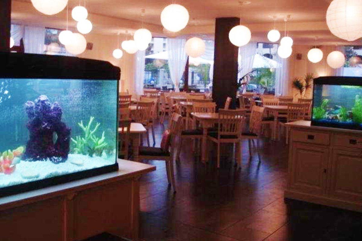Hotel Sun - Sunčev breg, Bugarska - Letovanje - AquaTravel.rs