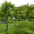 Thumbnail of http://Vila%20Elektra%20-%20Makrygialos,%20Grčka%20-%20AquaTravel.rs