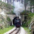 Thumbnail of http://Tara%20-%20Planinska%20lepotica%20Srbije%20-%20Izleti%20-%20AquaTravel.rs