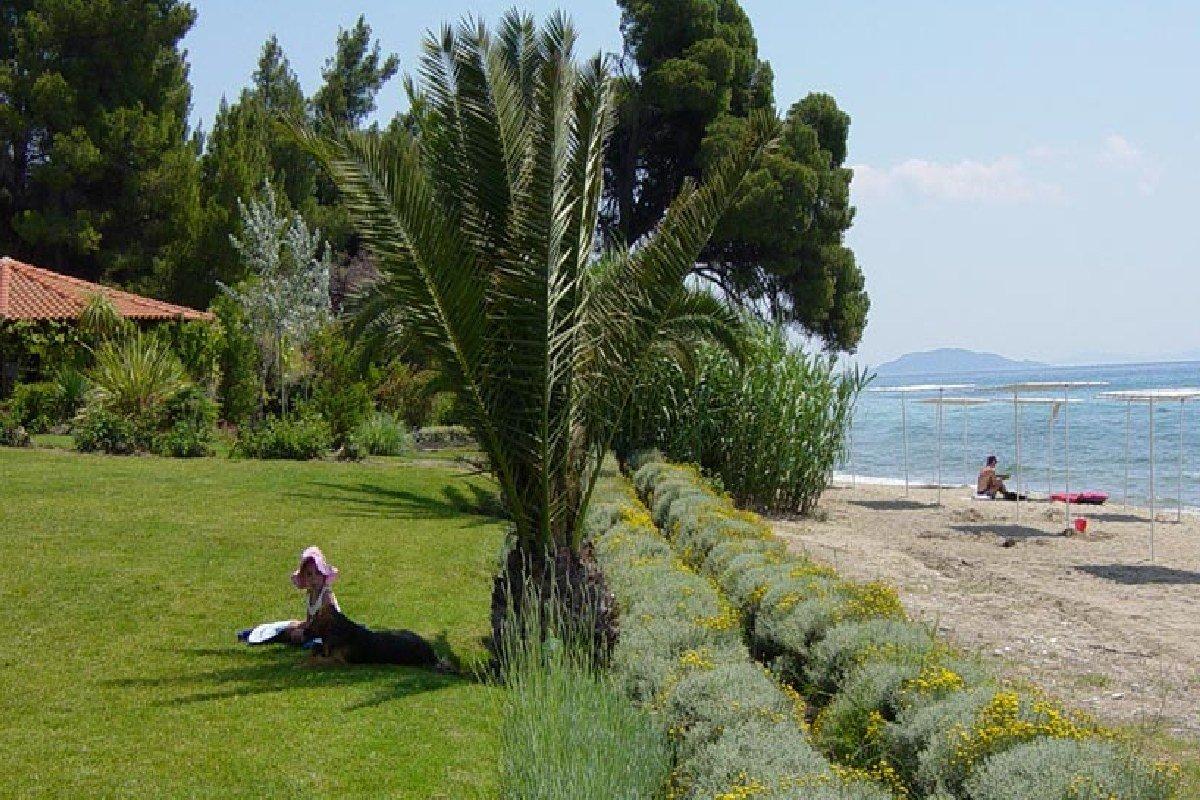 Hotel Lily Ann Beach bašta